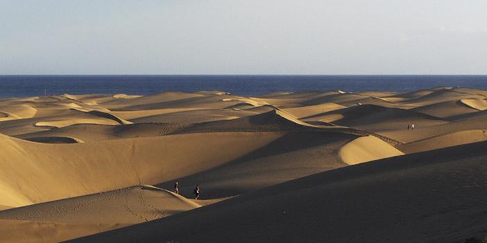 El Oasis, Maspalomas (Gran Canaria)