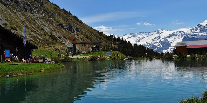 Follar en Suiza